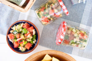 Salmon and Watermelon Salsa packed for a picnic