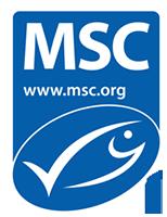 msc_logo_0
