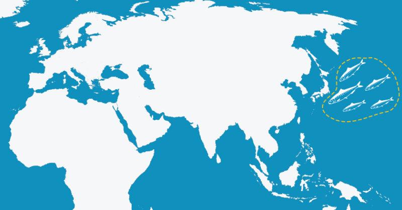 gold-seal-map-2-V3