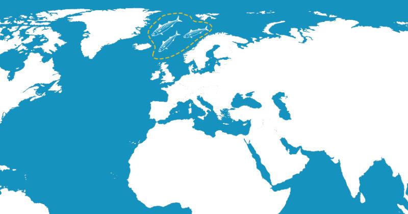 gold-seal-map-3-V3